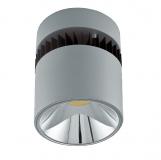 Aufputz Leuchte DLN 170 FORTIMO LED DLM mit 20 Watt oder 31 Watt